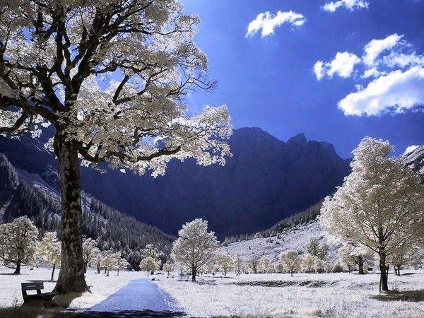 Fond d ecran paysage hiver page 9 for Foto de fond ecran